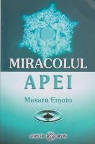 MIRACOLUL APEI