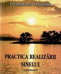 Practica realizarii sinelui - Vol. 1