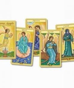 Karma Angels - Ingerii karmei - 32 carti